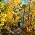 Autumn colors on the Big Pine Creek North Fork Trail.- The West's Best Hikes for Fall Colors