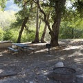 Typical campsite at Coldbrook Campground.- A Guide to Camping Near L.A.