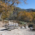 Typical campsite at Coldbrook Campground.- Where to Camp in California's San Gabriel Mountains