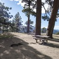 Typical campsite at Table Mountain Campground.- A Guide to Camping Near L.A.