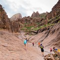 Siphon Draw.- Superstition Mountain Hikes You Won't Want to Miss