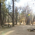Typical campsite at Mountain Oak Campground.- A Guide to Camping Near L.A.