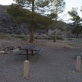 Typical campsite at Sycamore Flat Campground.- A Guide to Camping Near L.A.