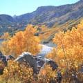 Fall colors at Lake Sabrina.- 15 Perfect Day Hikes to Find Fall Foliage