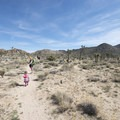 Wall Street Mill Hike.- Minerva Hoyt: The Woman Behind California Desert Preservation