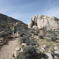 Starting off on the Ryan Mountain Trail.- Best Day Hikes Near Palm Springs