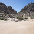 Group campsite at Sheep Pass Group Campground.- A Guide to Camping in the Mojave Desert