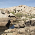 Water behind the Barker Dam in Joshua Tree National Park.- Exploring California's 9 National Parks