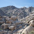 View up into Rattlesnake Canyon from the Indian Cove Day Use Picnic Area.- Joshua Tree National Park