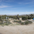 Black Rock Canyon Campground.- Guide to Camping in Joshua Tree National Park