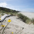 Wakonda Beach at Beachside State Recreation Site Campground.- Underused Gems of the Oregon Coast