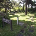 Hiker/biker campsites at Beachside State Recreation Site Campground.- A Guide to Camping on the Central Oregon Coast