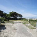 Beachside campsite at Beachside State Recreation Site Campground.- Let's Go Camping