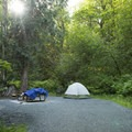 Typical campsite at Lakeside Campground.- Sasquatch Provincial Park