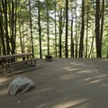 Typical campsite at Bench Campground.- Sasquatch Provincial Park