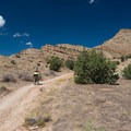 Treking up to the top of Joe's Ridge.- Great Mountain Biking in Fruita and Grand Junction, Colorado