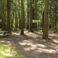 Sunnyside Campground.- 5 Reasons Why You Should Spend a Weekend at Cultus Lake