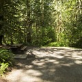 Typical campsite at Entrance Bay Campground.- Cultus Lake Provincial Park