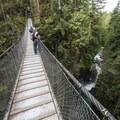 Lynn Canyon Suspension Bridge with Lynn Creek below.- Vancouver B.C.'s Incredible Waterfalls