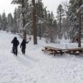 Aspen Glen Picnic Area.- California Winter Adventures Beyond the Ski Slopes