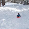 Sledding in Aspen Glen Picnic Area.- California Winter Adventures Beyond the Ski Slopes