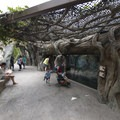 Reptile exhibit at the Los Angeles Zoo, Griffith Park.- Griffith Park