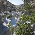 Swimming hole at Deep Creek Warm Springs.- Southern California's 18 Best Swimming Holes