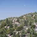 View west toward Clarks Summit from Grand View Point.- 12 Great Summit Hikes Near Los Angeles