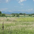 View of the Front Range at Cherry Creek State Park.- 10 Incredible Colorado State Parks