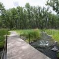 Crossing over Cherry Creek on the Wetland Loop Hike.- Cherry Creek State Park