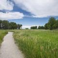 Wetland Loop Trail, Cherry Creek State Park.- Cherry Creek State Park