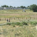 Off-leash dog area at Chatfield State Park.- 10 Incredible Colorado State Parks