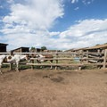 Horse stables at Chatfield State Park.- Denver's Best Parks