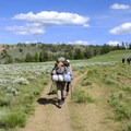 Agate Creek.- 6 Best Backpacking Trips in Yellowstone National Park