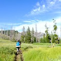 Almost 2 miles into the Sky Rim Trail, the trees give way to a meadow with an excellent view of Meldrum Mountain straight ahead.- 6 Best Backpacking Trips in Yellowstone National Park