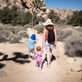 The nature trails are an excellent choice for families.- Joshua Tree National Park