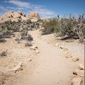 The Skull Rock Nature Trail continues across the road.- California's 60 Best Day Hikes