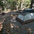 A tent site at Dockery Lake Campground.- The Beginner's Guide to Car Camping
