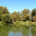 View from one of the fishing piers in Southside Community Park.- Examining The Sacramento Watershed: The People