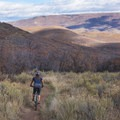 Riding the Dutch Hollow Trail System in Wasatch Mountain State Park.- Salt Lake City's 17 Best Mountain Bike Rides
