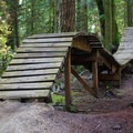 Rolling boardwalk at Duthie Hill Park.- 30 Must-Do Adventures in Washington