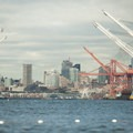 Cranes in the Port of Seattle along the Duwamish Waterway.- Adventure in the City: Seattle
