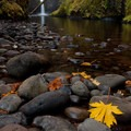 Low flow during some autumns allows for a more accessible view of Punchbowl Falls.- Best Fall Hikes Near Portland
