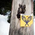 Trail to Alexander Falls in winter.- Ski Bum Sweethearts' Best Romantic Getaways