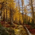 Enchantment Lakes Trail- The Best Leaf-Peeping Adventures for Fall Foliage
