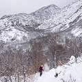 Ferguson Canyon Snowshoe.- 5 Safe and Easy Ways to Enjoy Winter in the Wasatch
