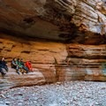 Enjoying the seclusion of Fern Glen, a side hike not to be missed on a river trip.- Grand Canyon National Park