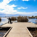 Alligator Marsh Boardwalk is a great place for wildlife photography.- 3-Day Adventure Itinerary in New Orleans, LA