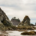 Sea stacks jut out from the sea floor between La Push and Hoh River.- 3-Day Itineraries for Olympic National Park