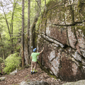 Glacial boulders and rocky outcroppings are found on the Chatfield Trail that runs through thick forest in southern Connecticut.- Ultimate Leaf-Peeping Road Trip through New England